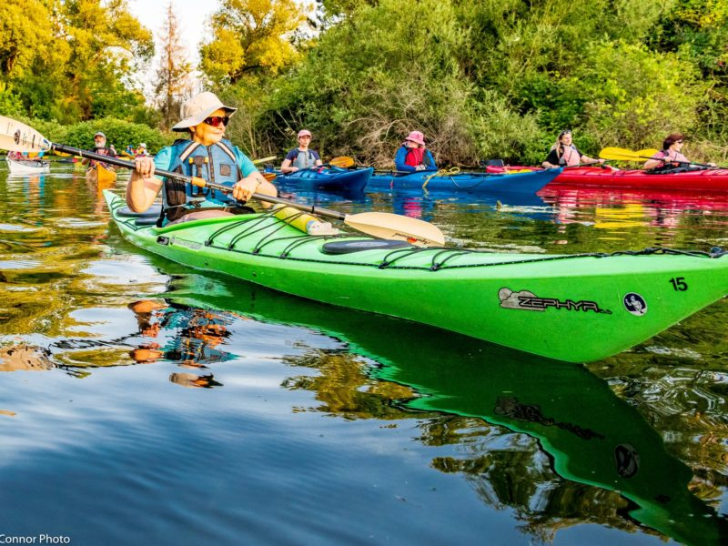 Diane Parker outon a social paddle at Harbourfront Canoe & Kayak Centre