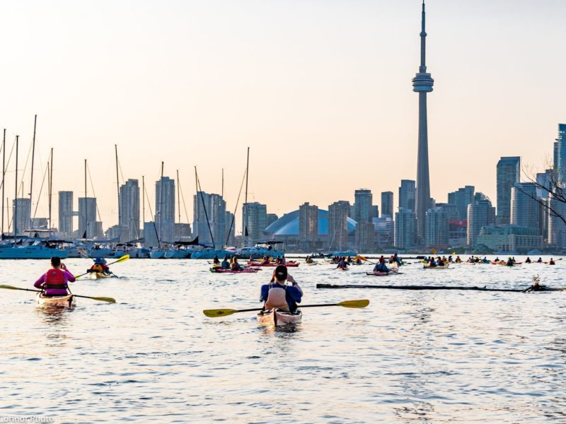paddlers on a social paddle and toronto skyline